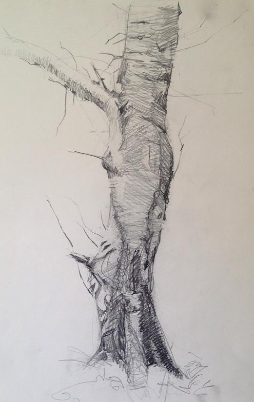 Tree No 1